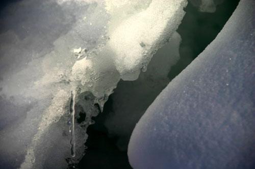 vinter20091